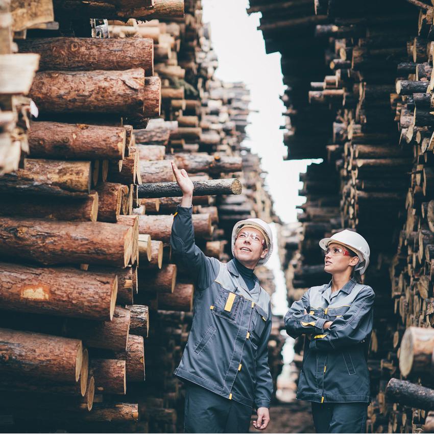 Emploi scieries - Intro-Travail Lac-Mégantic et East-Angus